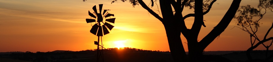 sunset windmill for website